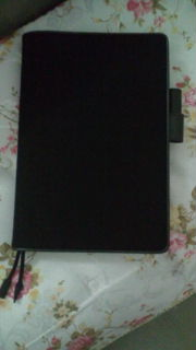 ブラック・チドリ−ほぼ日手帳とボールペンその1